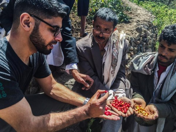 Кофе в Йемене