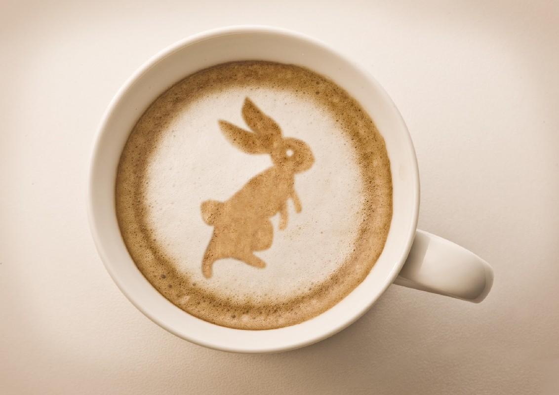 нем картинки чашки и кролика биланов украинский актер
