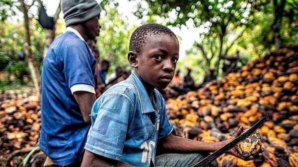 руанда, кофе, бизнес, блокчейн, нестле, поставки, детский труд